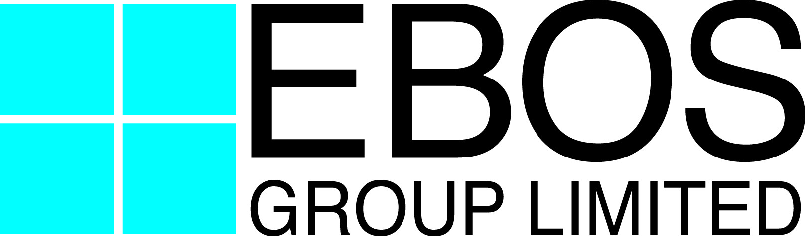 Ebos_Group_logo