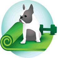 Home Exercise Programs